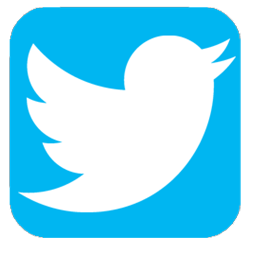 Image result for twitter app icon""